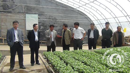 董事长韩吉书介绍安信种苗公司育苗工艺及流程