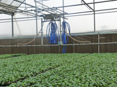 安信种苗集约化育苗物联网系统-移动喷灌车