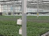 安信种苗温湿度传感器