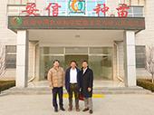 中国农科院尚庆茂研究员莅临安信种苗交流指导