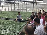 2018济阳番茄实用技术培训班(一、二期)结业,精彩瞬间回顾